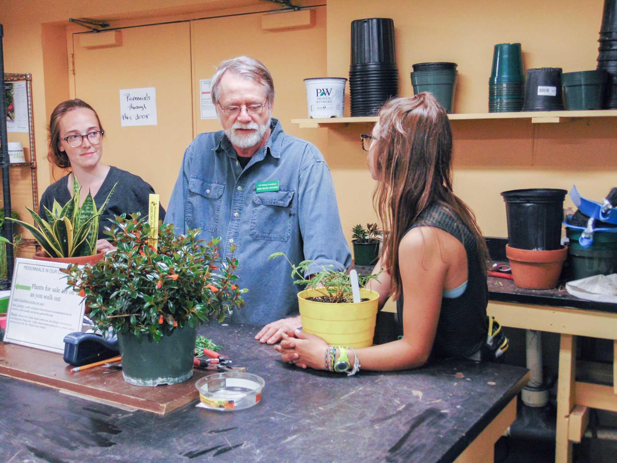 Plant purchases hit peak profits