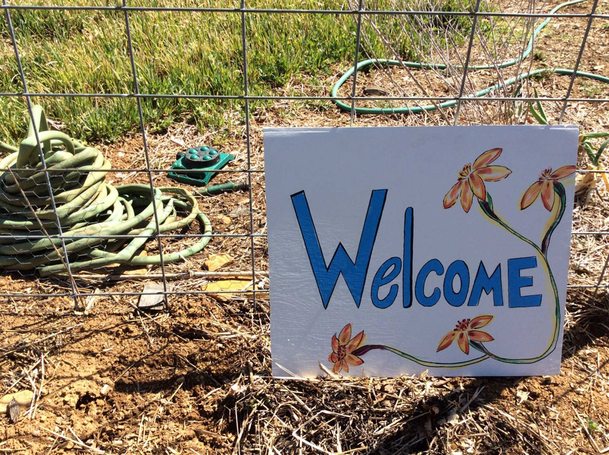 Blackburn Community Outreach helps combat High Country food insecurity
