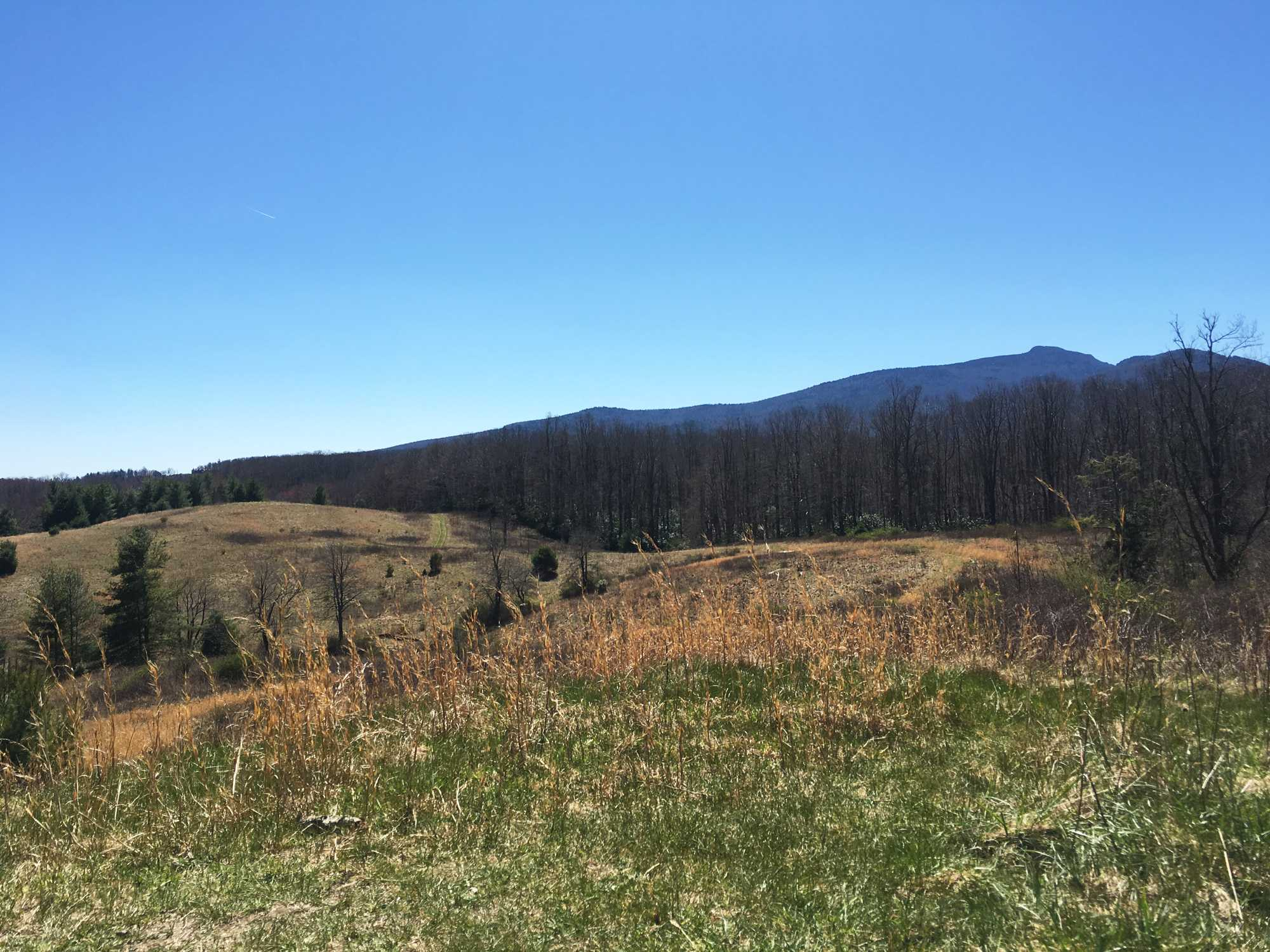 Hiking1_web_CeliaCalhoun