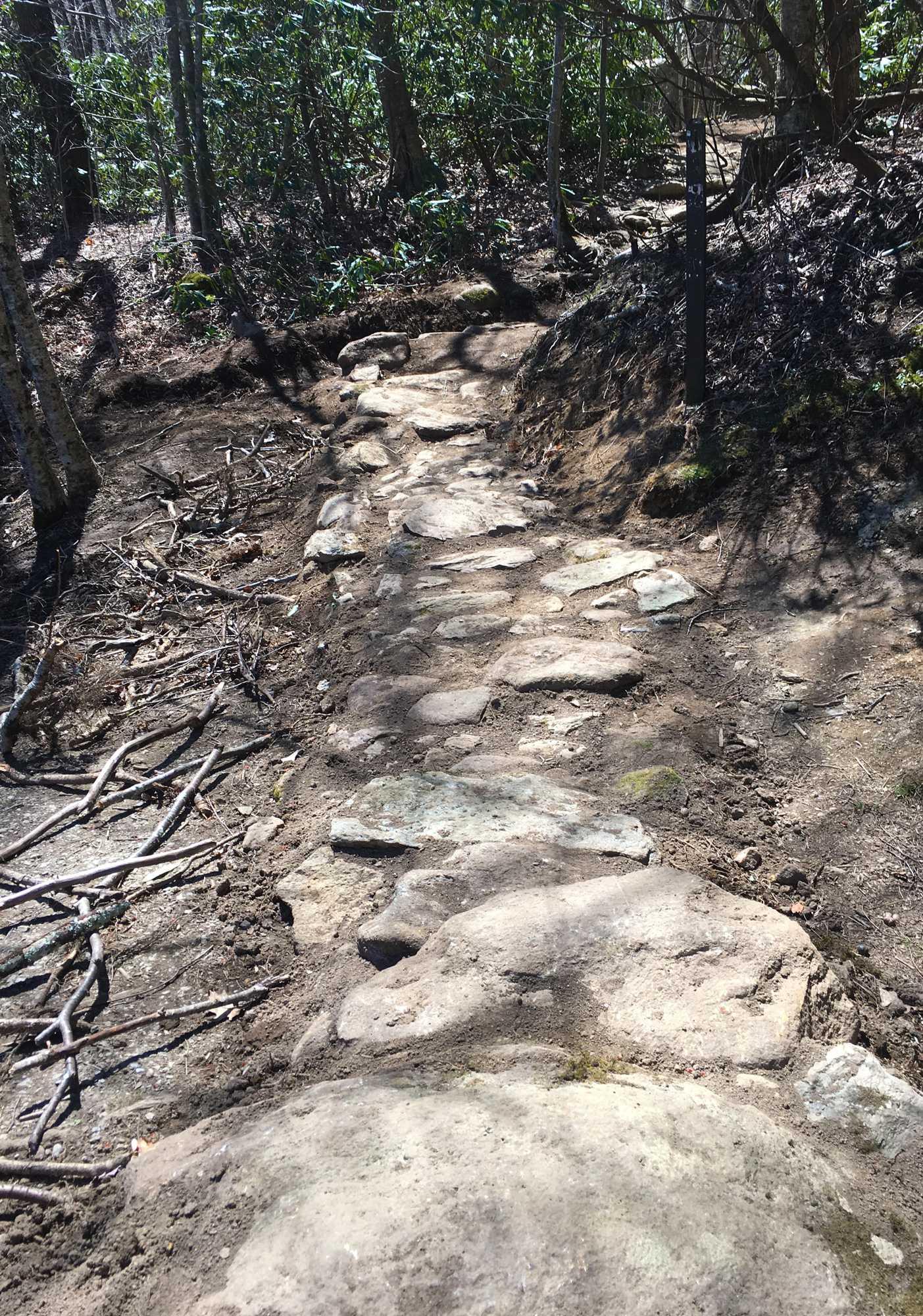 Hiking5_web_CeliaCalhoun