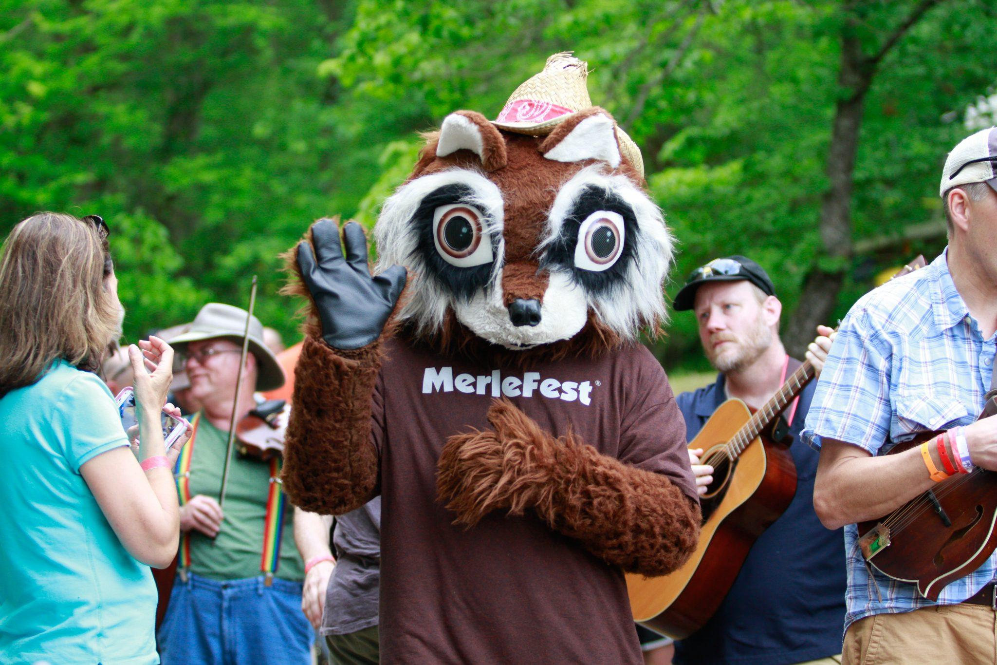 MerleFest%27s+mascot%2C+Flattop+the+raccoon%2C+at+MerleFest+2016.+Photo+by+Jeff+Clements.