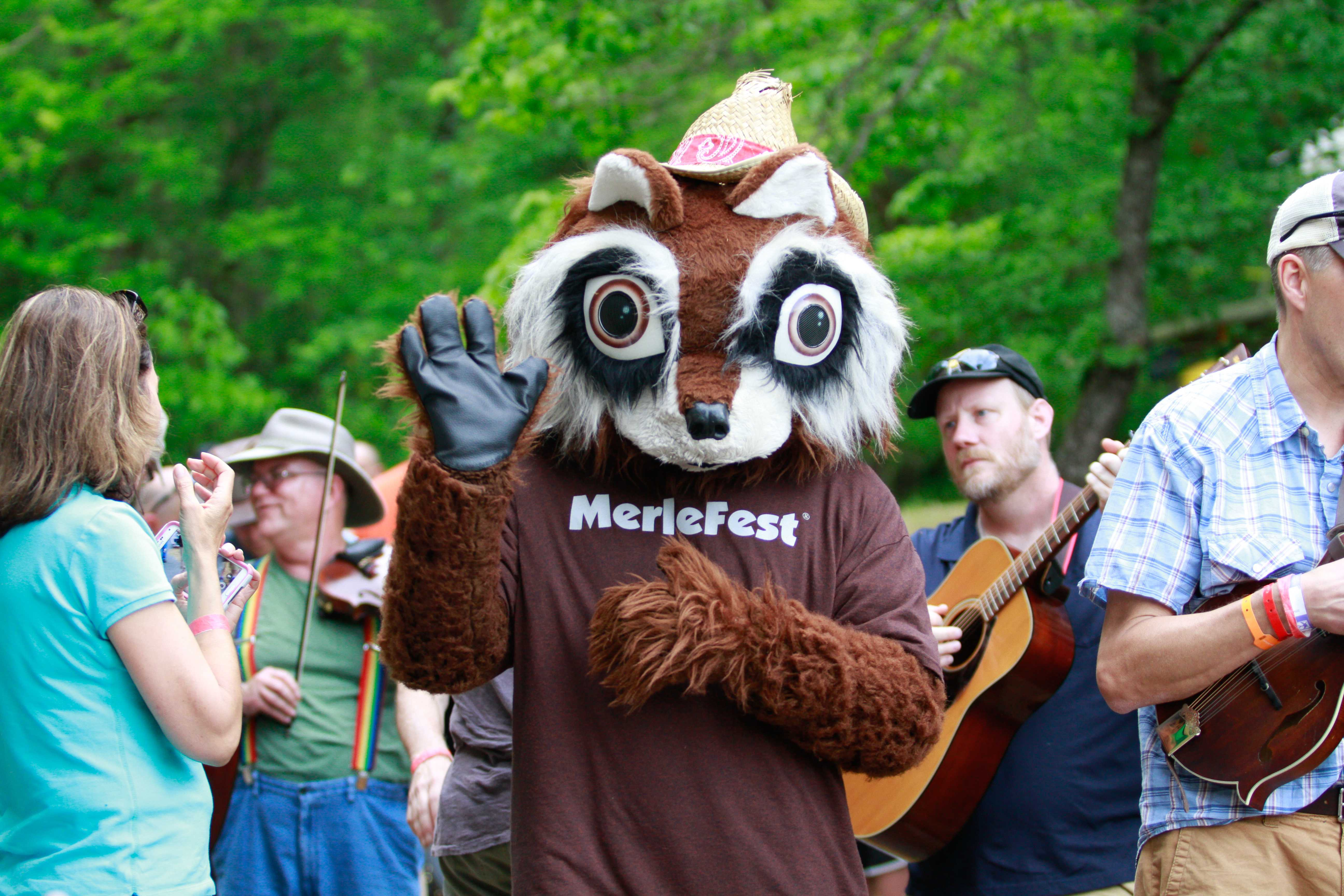 MerleFest's mascot, Flattop the raccoon, at MerleFest 2016. Photo by Jeff Clements.