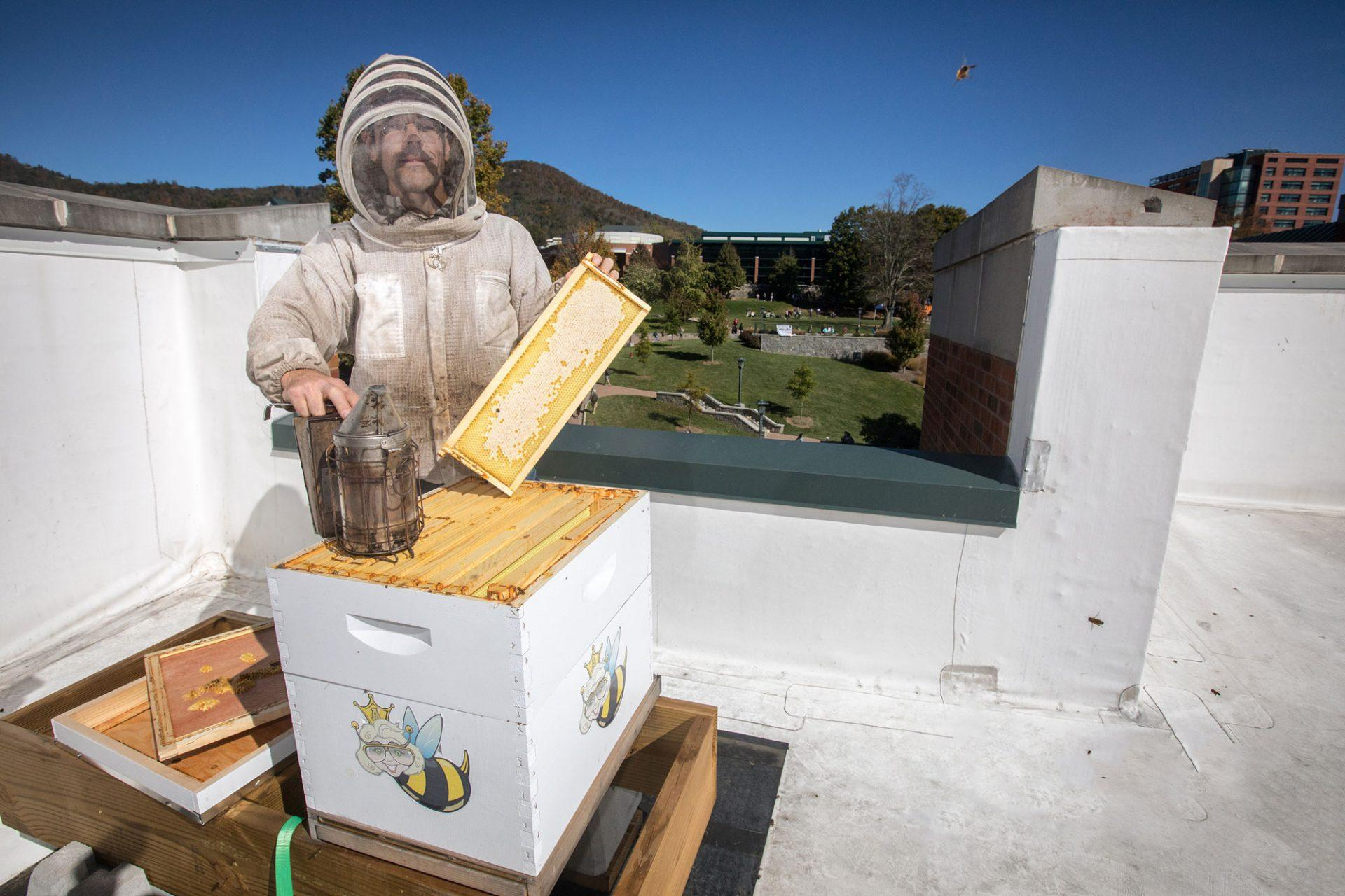 Roess Dining Hall beehive teaches students about the importance of bees
