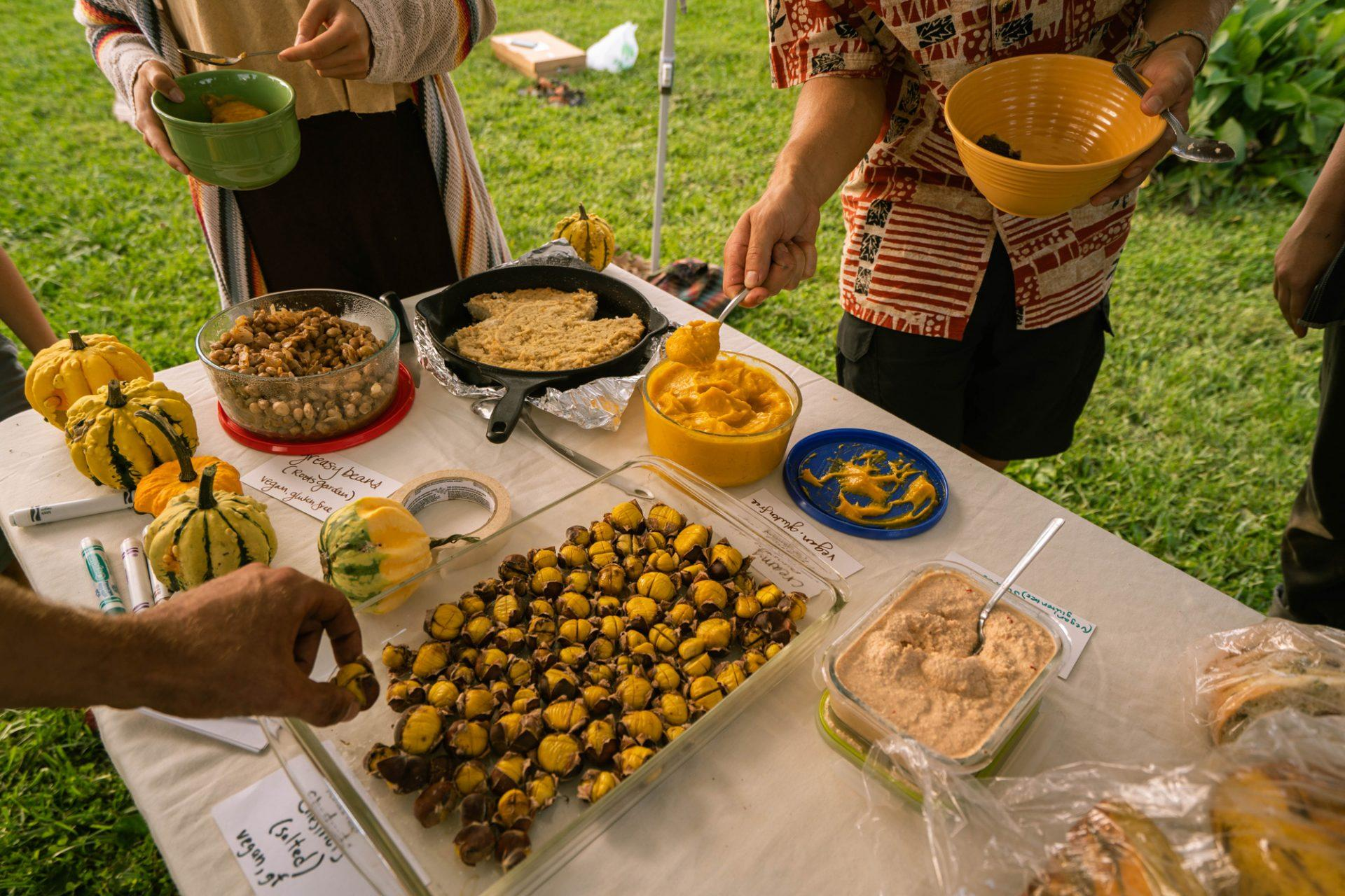 The table spread at the Equinox Harvest Celebration featuring food entirely grown on campus gardens or sourced from local producers. Pictured is pumpkin dip, salted chestnuts, cashew spread, Stick Boy bread, greasy beans, vegan cornbread and garden grown gourds.