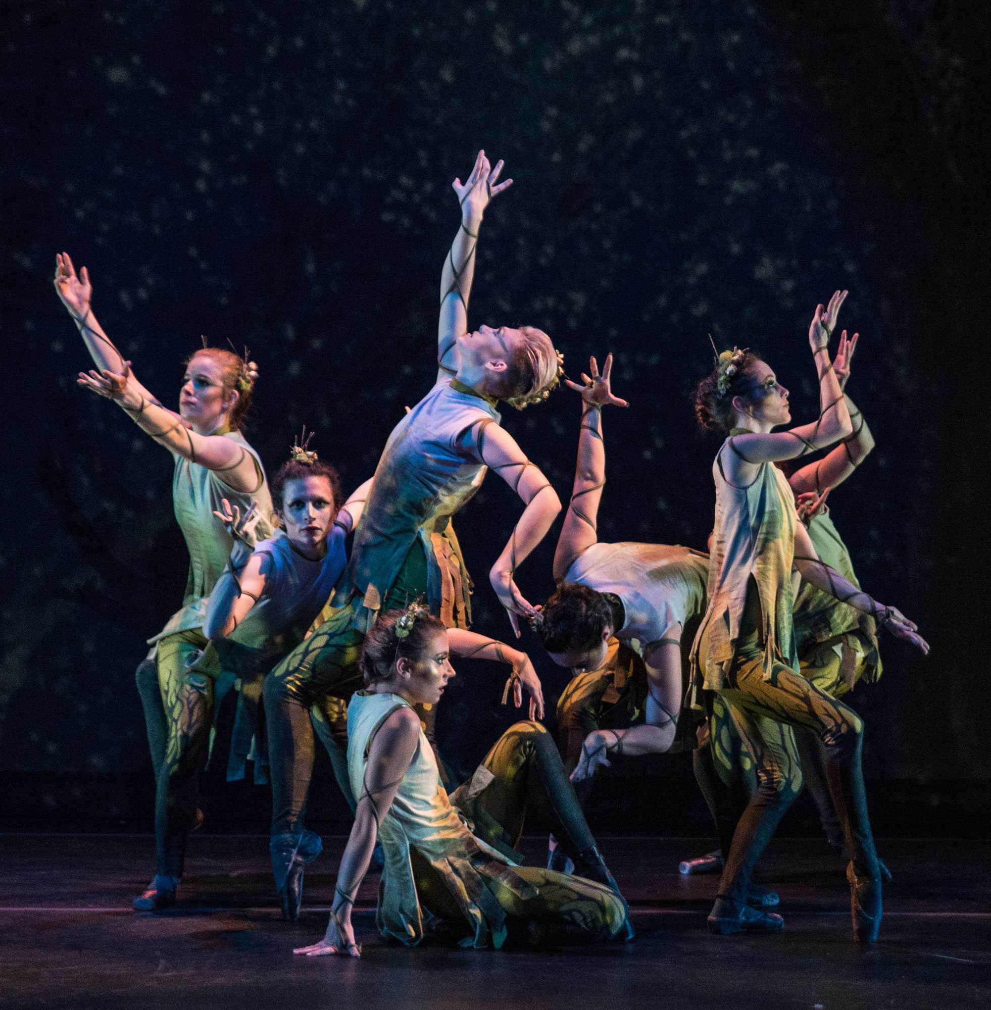 UnderStory is the title of an original work choreographed in spring 2018 by Regina Gulick, senior lecturer in dance studies at Appalachian State University. Her cast of student dancers included, from left to right, Ashley Holliday, Amanda Mason, Lexi Ovenden, Lyndsey Porter, Elise Staub, Bronwyn Weismiller, and Annie Young.