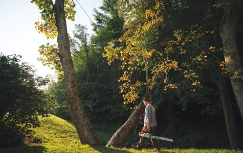 """Leaf"" it to App State's arborists to beautify App State's campus"