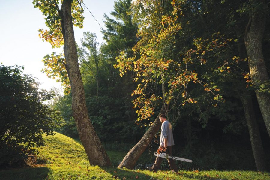 Jordan Gragg, an arborist at App State, holds an associates degree in Horticulture and has worked with the landscaping department for six years. For four generations, his family has grown trees outside of Blowing Rock.