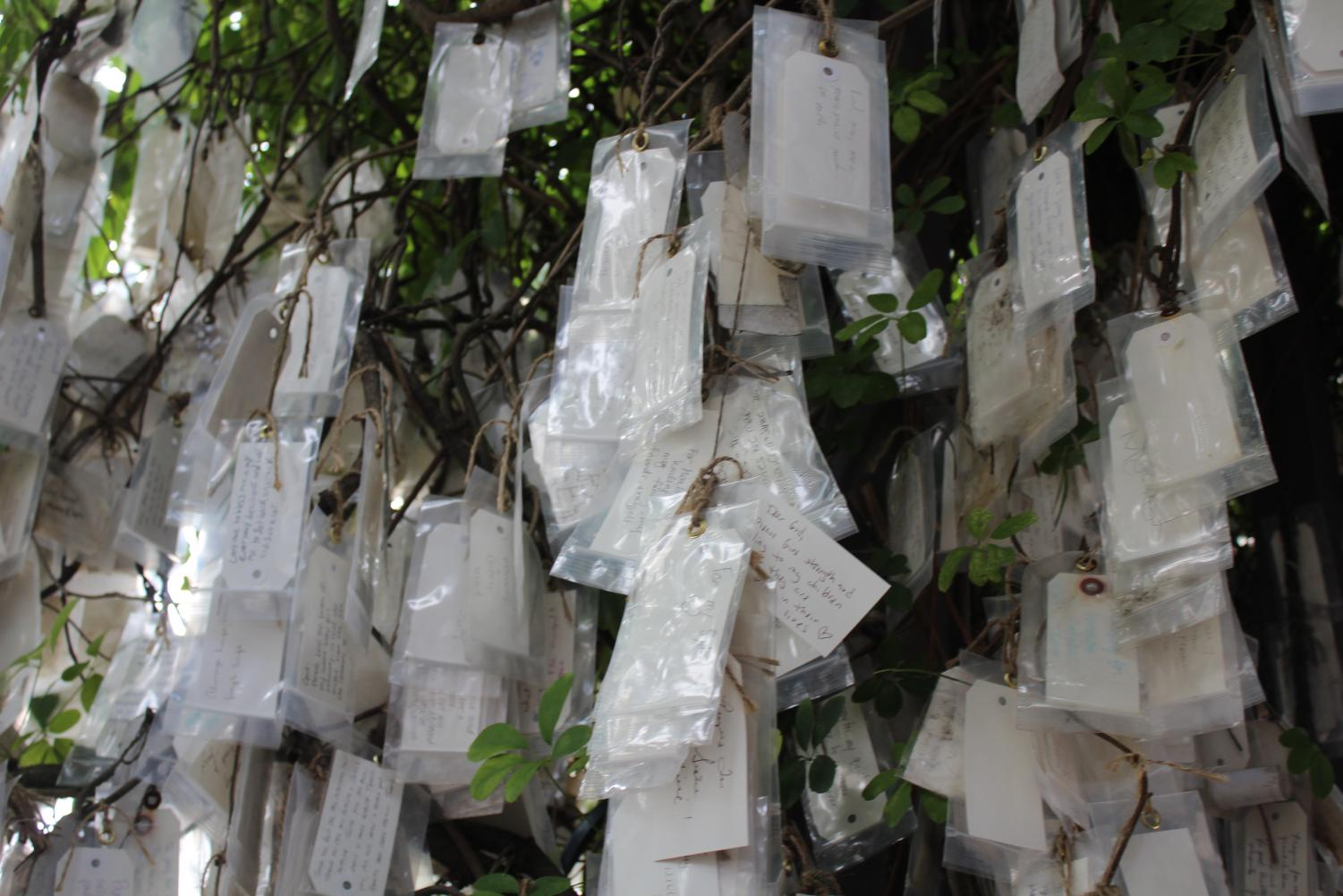 A cluster of prayers left by passerby's. There are many connected in groups around multiple limbs of the tree.