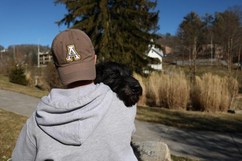 App State students will pack their bags for service this spring break