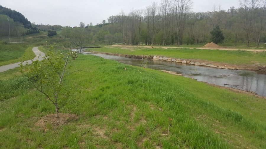 Land along the New River was formerly a dairy farm before the Town of Boone purchased it in 2016. A majority of the purchased land is protected conservation land, established to support the habitat.