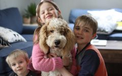 The three Delaney children with their Goldendoodle, Winky.