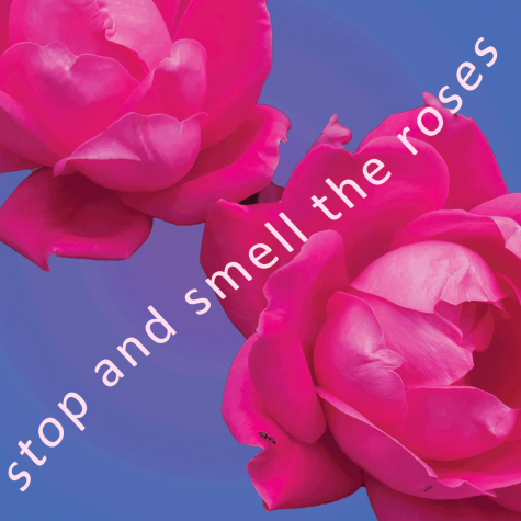 Playlist of the week: Stop and Smell the Roses